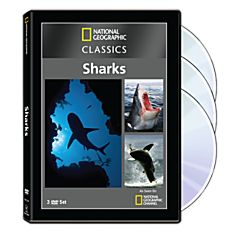 National Geographic Classics: Sharks DVD Collection