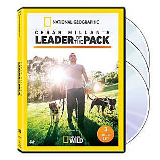 View Cesar Millan's Leader of the Pack DVD image