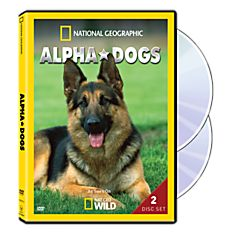 Alpha Dogs Season One DVD, 2013