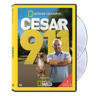 View Cesar 911 DVD image