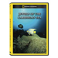 Jewels of the Caribbean Sea DVD Exclusive