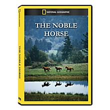 The Noble Horse DVD