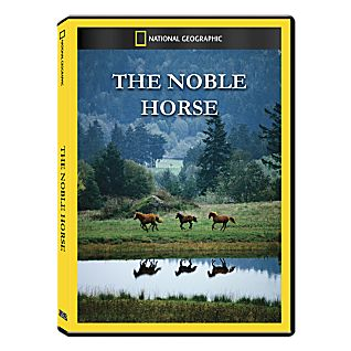 View The Noble Horse DVD Exclusive image