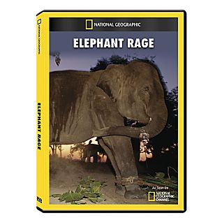 View Elephant Rage DVD Exclusive image