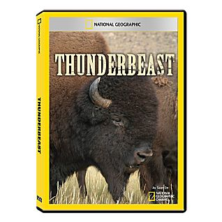 View Thunderbeast DVD Exclusive image
