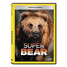 Wildlife Bear DVD