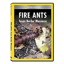 Fire Ants: Texas Border Massacre DVD Exclusive