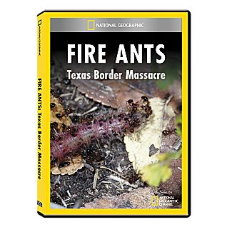 View Fire Ants: Texas Border Massacre DVD Exclusive image