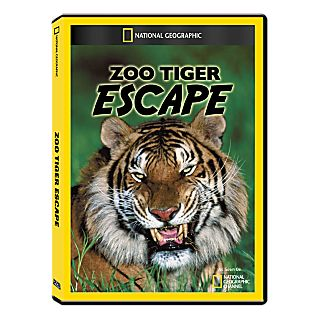 Zoo Tiger Escape DVD Exclusive