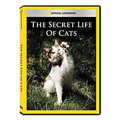 Secret Life of Cats DVD