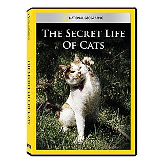 Secret Life of Cats DVD Exclusive