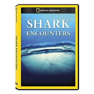 Shark Encounters DVD Exclusive