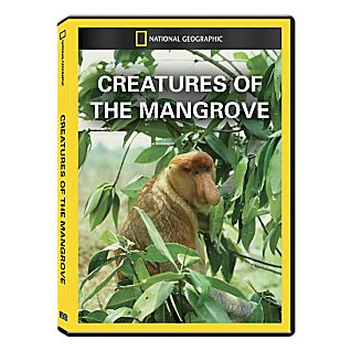 Creatures of the Mangrove DVD Exclusive