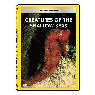 Creatures of the Shallow Seas DVD Exclusive