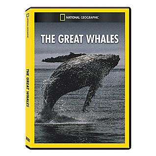 Great Whales DVD Exclusive