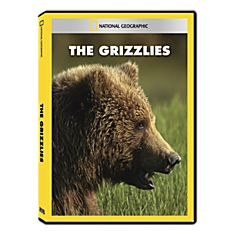 Grizzly Bear DVD