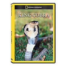 King Cobra DVD