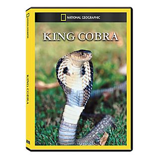 King Cobra DVD Exclusive