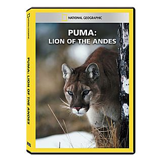 View Puma: Lion of the Andes DVD Exclusive image