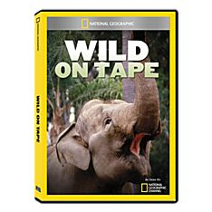 Wild Animal Video DVD