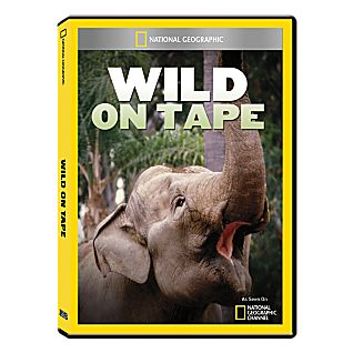 Wild on Tape DVD Exclusive
