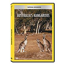 Australia's Kangaroos DVD