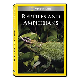 View Reptiles and Amphibians DVD Exclusive image