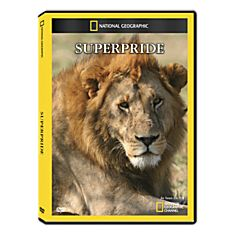 DVD for Lions in Nature