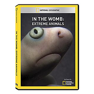 View In the Womb: Extreme Animals DVD-R image