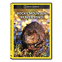 Rocky Mountain Beaver Pond DVD