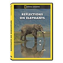 Reflections on Elephants DVD Exclusive