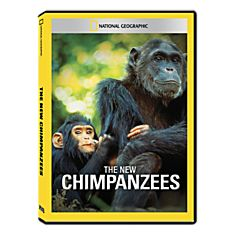 The New Chimpanzees DVD Exclusive