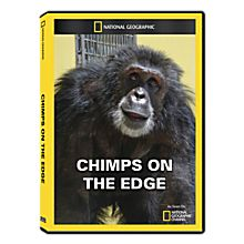 Chimps on the Edge DVD Exclusive