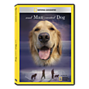 And Man Created Dog DVD-R