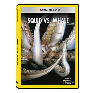 View Squid vs. Whale DVD-R image