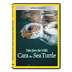 Tales from the Wild: Cara the Sea Turtle DVD Exclusive