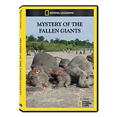 Mystery of the Fallen Giants DVD