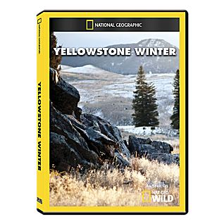 Yellowstone Winter DVD Exclusive
