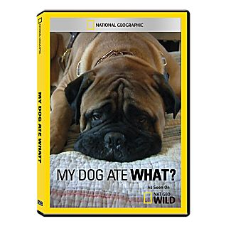My Dog Ate What? DVD Exclusive