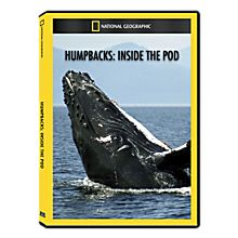Humpbacks: Inside the Pod DVD Exclusive