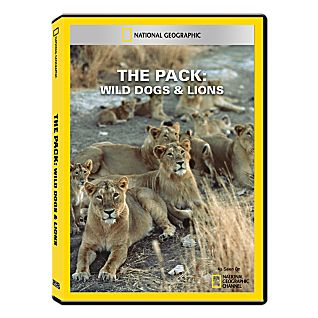 View The Pack: Wild Dogs & Lions DVD-R image
