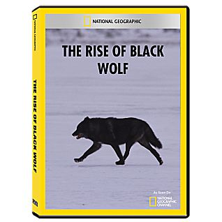 The Rise of Black Wolf DVD-R
