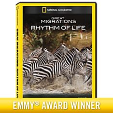 Great Migrations: Rhythm of Life DVD-R