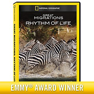 View Great Migrations: Rhythm of Life DVD-R image