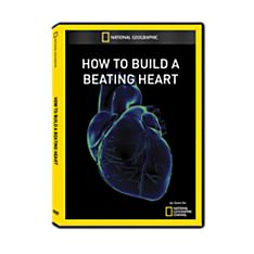 How to Build a Beating Heart DVD-R, 2011