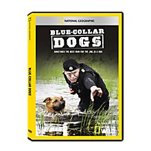 Blue-Collar Dogs DVD-R