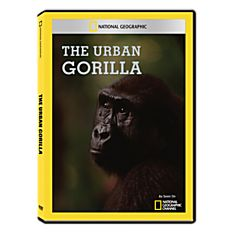 The Urban Gorilla DVD-R, 1997
