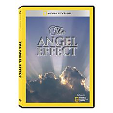 The Angel Effect DVD-R