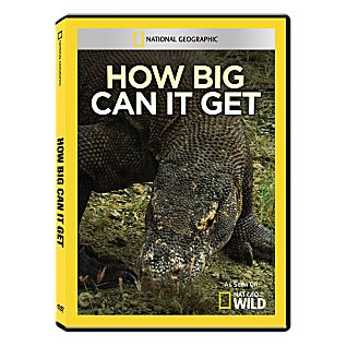 View How Big Can It Get DVD-R image