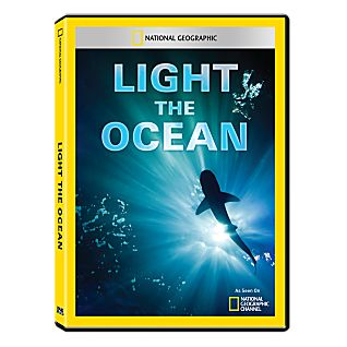 View Light the Ocean DVD-R image